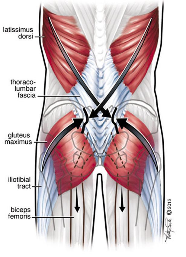 Types Surgery Parathyroid